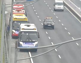 Dừng đỗ lung tung trên cao tốc, đoàn xe khách đối diện án phạt 5 triệu đồng/xe
