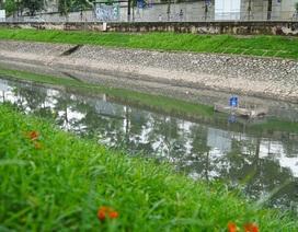 Nước sông Tô lịch đổi màu sau nửa tháng lọc bằng công nghệ Nhật