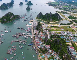 Huỷ kết quả đấu giá, người dân rút đơn tố cáo tại Vân Đồn (Quảng Ninh)