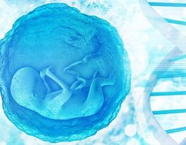 Những em bé được chỉnh sửa gene đầu tiên có nguy cơ tử vong sớm