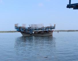 Ngư dân vẫn đánh bắt cá sau lệnh cấm của Trung Quốc