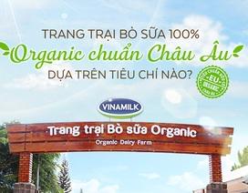 Những tiêu chuẩn khắt khe từ A đến Z đối với một trang trại bò sữa Organic chuẩn Châu Âu