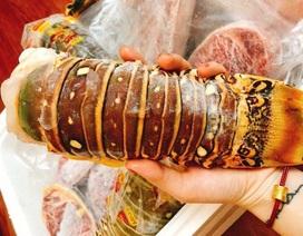 """Doanh nhân Việt bỏ tiền tỷ mua bonsai Nhật; Dân thường """"sang chảnh"""" ăn đuôi tôm hùm 3 triệu đồng/kg"""