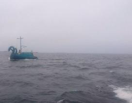 """Phần Lan truy tìm """"quái vật ba đầu"""" trên biển"""