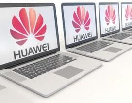 """Bị Intel và Microsoft """"nghỉ chơi"""", Huawei buộc phải tạm ngừng sản xuất và bán laptop mới"""