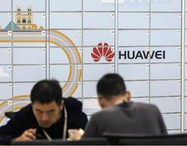 """Huawei, Xiaomi """"bắt tay"""" thử nghiệm hệ điều hành thay thế Android"""