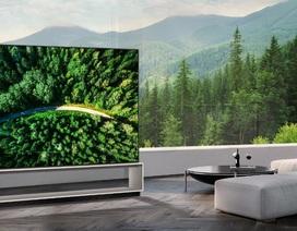 Thị trường TV OLED sẽ tăng trưởng gấp 10 lần trong 10 năm tới
