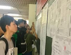 Hà Nội: Công bố điểm chuẩn lớp 10 chuyên, cao nhất 42,05 điểm