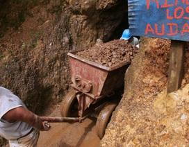 Phát hiện mỏ vàng khổng lồ ở Ecuador