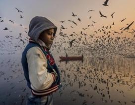 """Chìm đắm trong những """"pô"""" ảnh đầy mê hoặc tại cuộc thi ảnh quốc tế"""