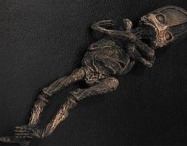 Sinh vật bị nghi là người ngoài hành tinh ở Nga cách đây 23 năm