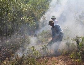 Nhiều bất cập, hệ lụytrongcông tácphòng chống cháy rừng tại Nghệ An