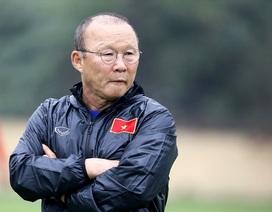 Phó Chủ tịch tài chính VFF: Lương cho thầy Park là thước đo đầu tiên!