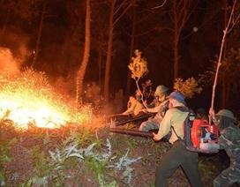 Vụ cháy rừng trong đêm: Lửa lại bùng phát dữ dội vào sáng sớm