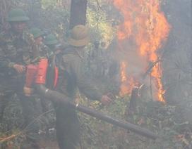 Tạm giữ 1 người nghi liên quan vụ cháy rừng nghiêm trọng tại Hà Tĩnh