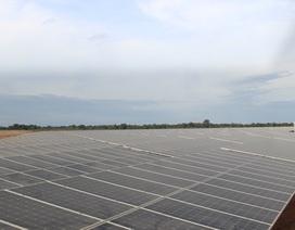 Chính thức vận hành nhà máy điện mặt trời đầu tiên tại Quảng Trị