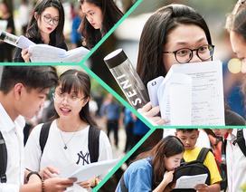Nóng: Bộ GD&ĐT công bố đáp án các bài thi trắc nghiệm THPT quốc gia 2019
