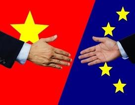 Hiệp định thương mại EU-Việt Nam: Mở ra cơ hội tiến sâu hơn vào chuỗi giá trị toàn cầu