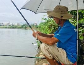 Giữa khu đô thị tiền tỉ, đàn ông Sài Gòn say sưa bắt cá