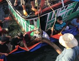 Trục vớt thành công tàu cá bị đắm gần cửa biển Cửa Đại
