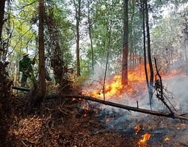 Lại cháy rừng ở Hà Tĩnh