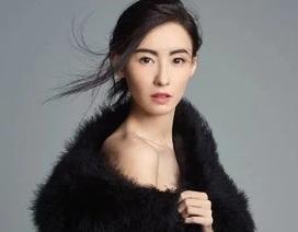 39 tuổi, Trương Bá Chi đằm thắm và quyến rũ hơn!