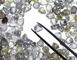 Bán một lúc hơn trăm viên kim cương giá 240 tỷ đồng