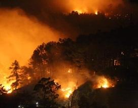 Toàn bộ nhân viên Điện lực Hương Sơn thức trắng đêm để chống cháy rừng