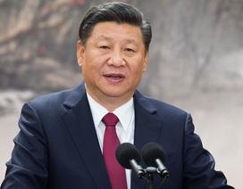 """Ông Tập Cận Bình yêu cầu quan chức Trung Quốc không """"lười biếng"""", """"ngồi ăn cả ngày"""""""