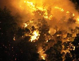 Hơn 600 người xuyên đêm dập đám cháy dữ dội trên núi Bà Hỏa