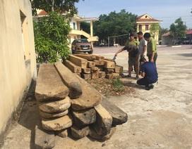 Đối tượng chở gỗ lậu tấn công kiểm lâm viên khi bị truy bắt