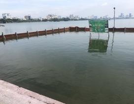 Nước Hồ Tây giảm ô nhiễm khi được xử lý bằng công nghệ Nhật Bản