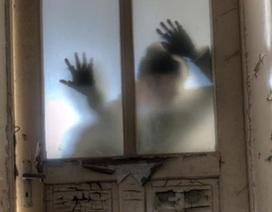 """Bạn nên làm gì nếu ngày tận thế với """"đại dịch zombie"""" xảy ra?"""