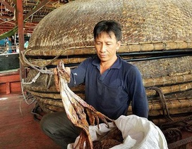 Vì sao xuất khẩu sang Trung Quốc ngày càng khó?