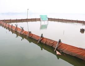 Nước Hồ Tây đổi màu sau thí điểm công nghệ làm sạch Nhật Bản