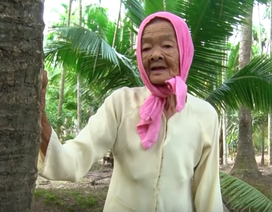 Cụ bà gần 80 tuổi leo dừa nhanh thoăn thoắt khiến nhiều người kinh ngạc