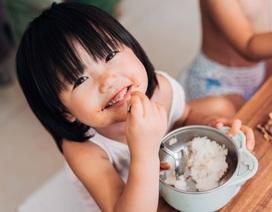 Chọn sữa cho con: Cách nào nhận biết một sản phẩm sữa tốt?