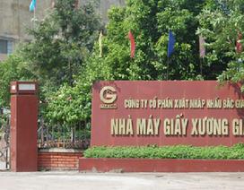 """Doanh nghiệp lớn tại Bắc Giang """"làm xiếc"""" trong hoạt động nhập khẩu phế liệu thế nào?"""