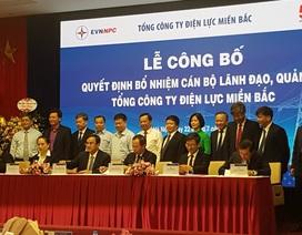 Công bố Quyết định bổ nhiệm cán bộ lãnh đạo, quản lý Tổng công ty Điện lực miền Bắc
