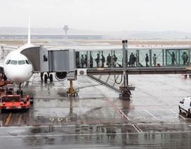 Kinh hoàng tìm thấy xác ướp bào thai trong toilet máy bay