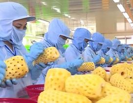 """Doanh nghiệp Việt hoàn toàn có thể """"đổ bộ"""" sang thị trường Mỹ"""