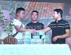 """""""Hàng khủng"""" Lâm Đồng: Chậu lan Giả hạc đột biến bán giá 5 tỷ đồng"""