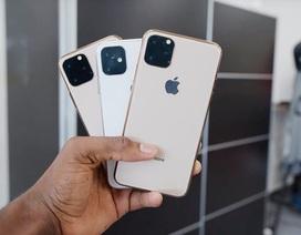 Lộ thông tin cấu hình và nhiều tính năng đáng chú ý trên iPhone XI
