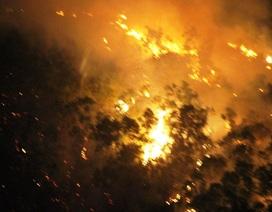 Rừng ở Bình Định cháy hơn 1 ngày đêm vẫn chưa dứt