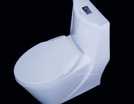 Toilet xả mạnh và tiết kiệm nước đang là xu hướng 2019