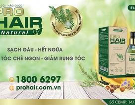 Tại sao bạn nên sử dụng dầu gội thảo dược cho tóc xơ, hư tổn, chẻ ngọn, rụng tóc?