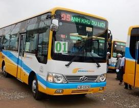 Đà Nẵng: Lượng khách đi xe buýt đã tăng
