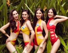 Hé lộ bộ ảnh bikini của dàn thí sinh Hoa hậu Thế giới Việt Nam