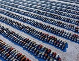 Trung Quốc sẽ trở thành nhà phân phối lớn nhất về xe hơi đã qua sử dụng