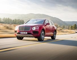 Bentley không dấn sâu vào cuộc chơi SUV